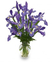 FLEUR-DE-LIS Iris Vase in Kansas City, MO | SHACKELFORD BOTANICAL DESIGNS