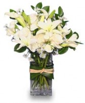 FRESH SNOWFALL Vase of Flowers in Rockville, MD | ROCKVILLE FLORIST & GIFT BASKETS