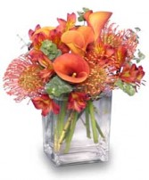 BURNT SIENNA Flower Arrangement in Walpole, MA | VILLAGE ARTS & FLOWERS