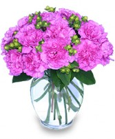 FANCY-FREE FUCHSIA Flowers for Any Occasion in Sylvan Lake, AB | CREATIVE FLOWERS, ART & GIFTS