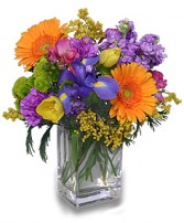 CELEBRATE THE DAY Fresh Flowers in Bethesda, MD | ARIEL FLORIST & GIFT BASKETS