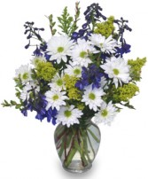 LAZY DAISY & DELPHINIUM Just Because Flowers in Santa Barbara, CA | ALPHA FLORAL