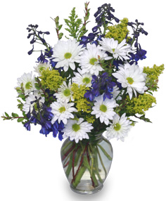 Lazy Daisy & Delphinium Just Because Flowers in Dunwoody, GA | DUNWOODY FLOWERS