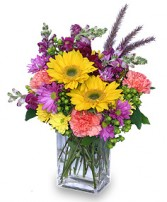 FESTIVAL OF COLORS Flower Bouquet in Tulsa, OK | THE WILD ORCHID FLORIST