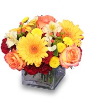 AUTUMN AFFECTION Floral Bouquet in San Leandro, CA | SAN LEANDRO BANCROFT FLORIST & LYNN'S FLORAL