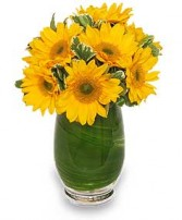 SUNNY DAY GREETINGS Vase of Flowers in Rochester, NH | LADYBUG FLOWER SHOP, INC.