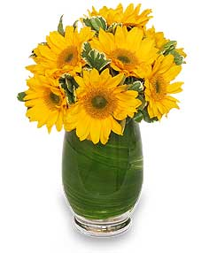 Sunny Day Greetings Vase of Flowers in Navarre, FL | NAVARRE BEACH FLOWERS & NURSERY