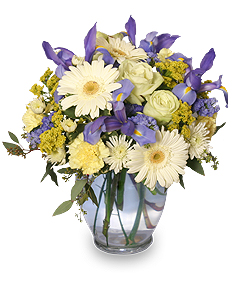 Welcome Baby Boy Flower Arrangement in Drayton Valley, AB | NATURE'S GARDEN FLOWERS