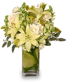 VERY SPECIAL DELIVERY Bouquet in Lake City, FL | LAKE CITY FLORIST