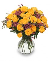 ROSES REJOICE! Golden Yellow Spray Roses in Danielson, CT | LILIUM