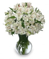 FLEECY WHITE Flower Arrangement in Columbia, SC | FORGET-ME-NOT FLORIST