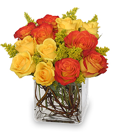 Phoenix Flame Rose Arrangement in West Hills, CA | RAMBLING ROSE FLORIST