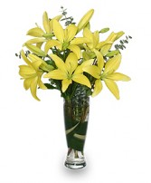 RISE & SHINE LILIES Arrangement in East Hampton, CT | ESPECIALLY FOR YOU