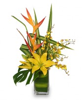 5-STAR FLOWERS Vase Arrangement in Cranston, RI | ARROW FLORIST/PARK AVE. GREENHOUSES