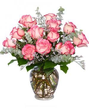 A DAZZLING DOZEN Pink Bi-Colored Roses in Richland, WA | ARLENE'S FLOWERS AND GIFTS