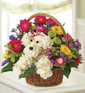a-DOG-able® in a Basket  in Clarksville, TN | FLOWERS BY TARA AND JEWELRY WORLD