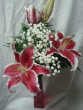 Beautiful Stargazer Lilly with baby's breath  arranged in a tall colored vase!