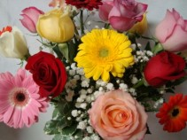 Special!! Doz mixed roses and Gerbera Daisies arranged in a vase with baby's breath!!