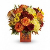 Autumn Expressions by Enchanted Florist
