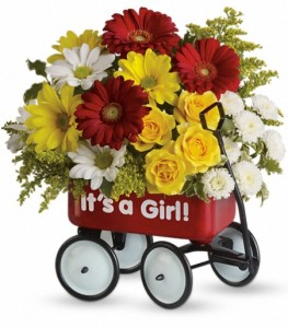 Baby's Wow Wagon Keepsake Container Arrangement  in Cape Coral, FL | ENCHANTED FLORIST
