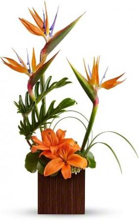Bamboo Paradise Flowers Birthday for everyone in Burbank, CA | LA BELLA FLOWER & GIFT SHOP