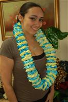 Beautiful Blue & Yellow Carnation Lei Customize in most school colors