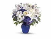 Beautiful in Blue T2093A Get Well, Everyday, Love, Romance
