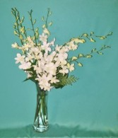 Blondie  Flower Arrangement