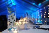 Blue Hue Reception