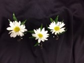Breath of Spring Daisy Boutonnierre Daisy Boutonniere
