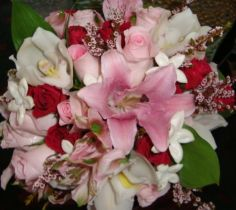 Designer's Choice Premium Bouquet in Nashville, TN | BLOOM FLOWERS & GIFTS