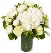 BRILLIANT WHITE BOUQUET in Bethesda, MD | ARIEL FLORIST & GIFT BASKETS
