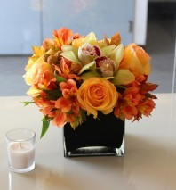 Graceful Glow Arrangement