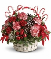 Candy Cane Christmas T118-3A