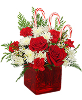 CANDY CANE CUBE Holiday Flowers
