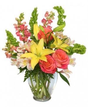 Carefree Spirit Flower Arrangement in Fremont, CA | NEWARK FLOWER SHOPPE