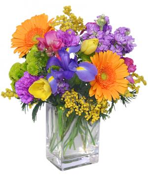 CELEBRATE THE DAY Fresh Flowers in Avon, CT | Evelyn Jane Florist