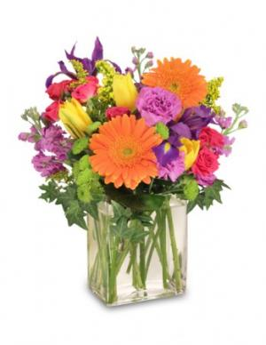 Celebrate Today! Bouquet in Braintree, MA | BARRY'S FLOWER SHOP INC.