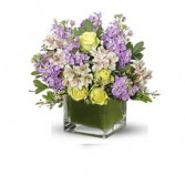 Chilled Out Cut Flowers