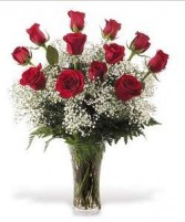 Classic  Roses    Price for 6,12 & 24