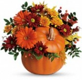 Country Pumpkin Fresh Flowers for Thanksgiving