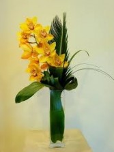 OC 2-Cymbidium orchid in a tall vase Also available in other colors