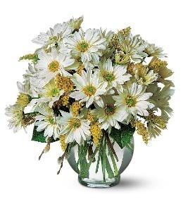 DAISY BOWL Vase Arrangement