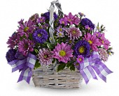 Daisy Dreams Daisy Basket Bouquet
