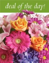Deal of the Day arrangement in Walpole, MA | VILLAGE ARTS & FLOWERS