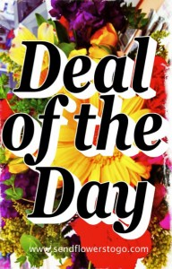 Deal of the Day Fresh Flower Arrangement