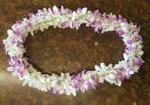 Double Dendrobium Orchid Lei **48 hour notice** Lei