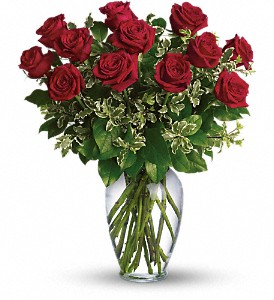 DOZ RED ROSES  in Pflugerville, TX | BLOOMIN' ACROSS TEXAS