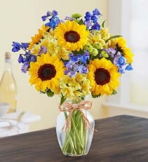 Fields of Summer Sunflowers, Button Mums, Delphinium, and More