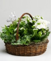Flowering Basket Basket